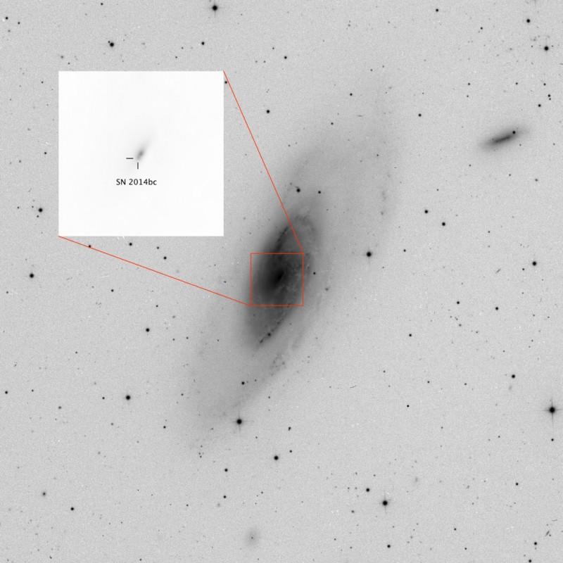 """SN 2014bc in M106 aufgenommen am 27.05.2014 um 04:19 UT mit einem Planewave 17"""" CDKAstrograph und einer FLI-PL6303ECCD Kamera."""